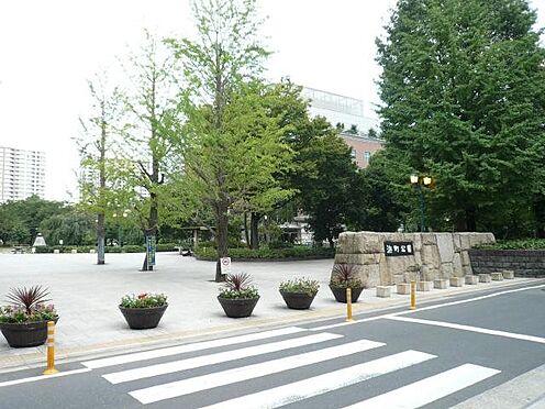 中古マンション-中央区日本橋中洲 浜町公園まで徒歩7分