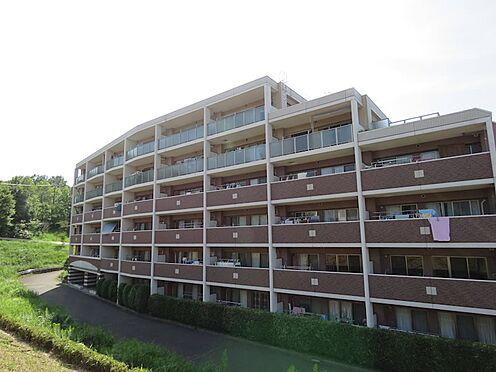 中古マンション-八王子市上柚木2丁目 緑に囲まれた住み心地の良いマンションです。