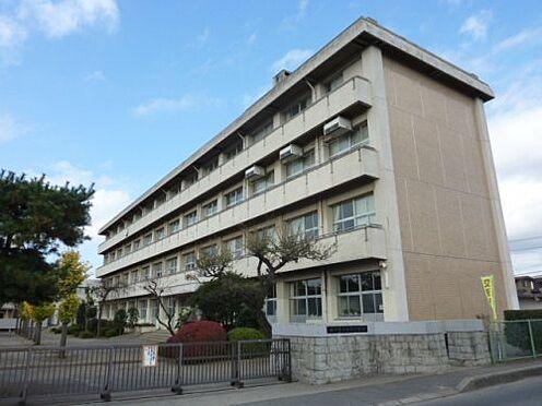 アパート-水戸市渡里町 【中学校】水戸市立第五中学校まで1617m