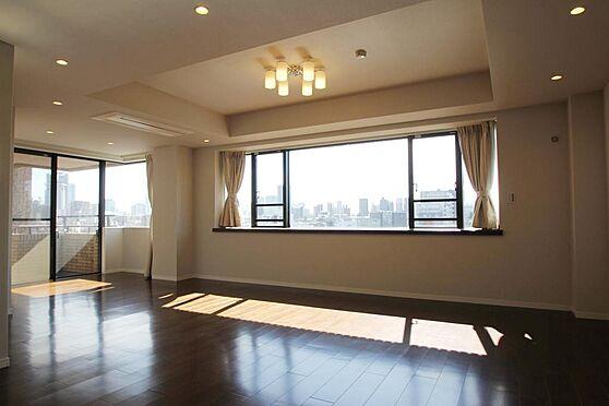区分マンション-文京区白山2丁目 28帖超のリビングからパノラマビューを望みます。