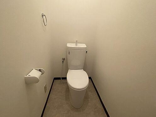 一棟マンション-羽島市竹鼻町丸の内4丁目 トイレ
