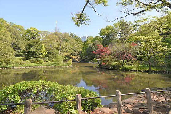 区分マンション-港区南麻布5丁目 有栖川宮記念公園 敷地内には渓流や池、様々な樹木がございます
