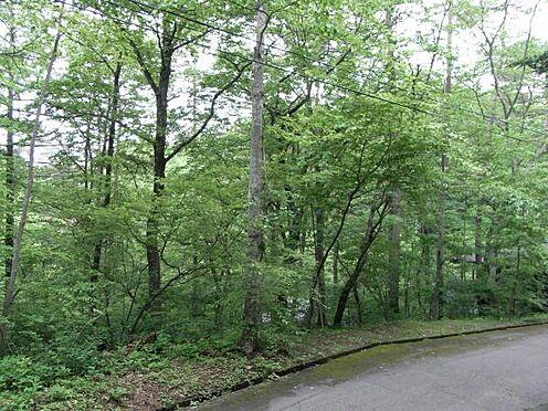 土地-北佐久郡軽井沢町大字長倉 緩傾斜地の土地です。