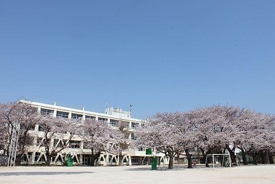マンション(建物一部)-松戸市五香8丁目 高木第二小学校 徒歩 約7分(約550m)