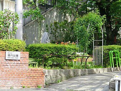 マンション(建物一部)-港区六本木3丁目 周辺環境:狸穴公園