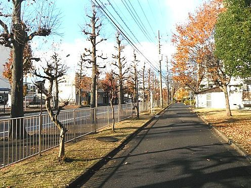 マンション(建物一部)-松戸市小金原7丁目 その他