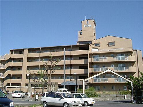マンション(建物一部)-近江八幡市日吉野町 外観
