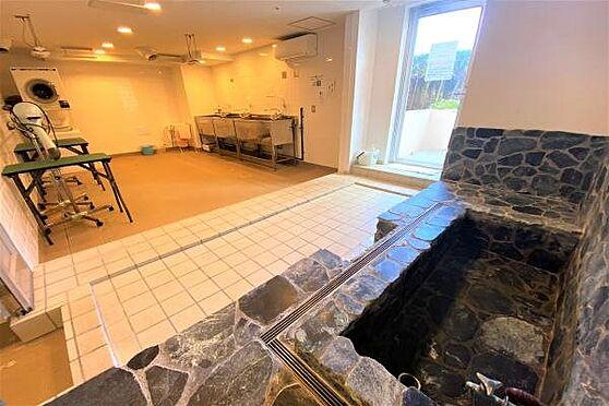 リゾートマンション-熱海市上多賀 トリミングルーム:ペット用の温泉・洗い場・ドライヤー台を完備。充実の共用施設。