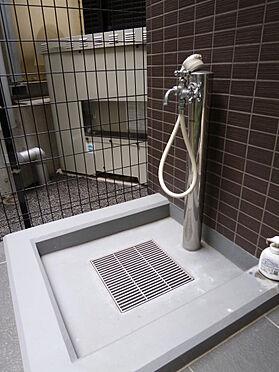 マンション(建物全部)-川口市芝新町 ペット用の足洗い場です。