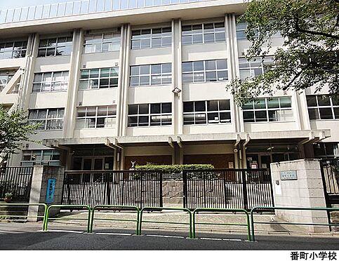中古マンション-千代田区六番町 番町小学校