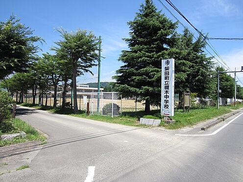 戸建賃貸-柴田郡柴田町槻木白幡3丁目 槻木中学校  約1400m