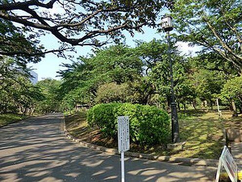 マンション(建物一部)-千代田区平河町2丁目 周辺環境:国会前庭
