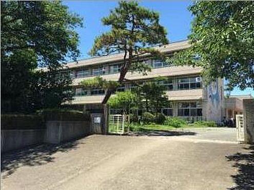 土地-東松山市大字上野本 【小学校】青鳥小学校まで約1300m