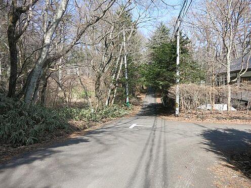 土地-北佐久郡軽井沢町大字長倉 南側前面道路は舗装済みです。