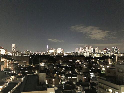 区分マンション-新宿区西早稲田3丁目 バルコニーからの眺望(夜景)