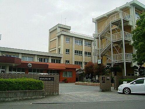 店舗付住宅(建物全部)-和歌山市中之島 【中学校】紀之川中学校まで585m