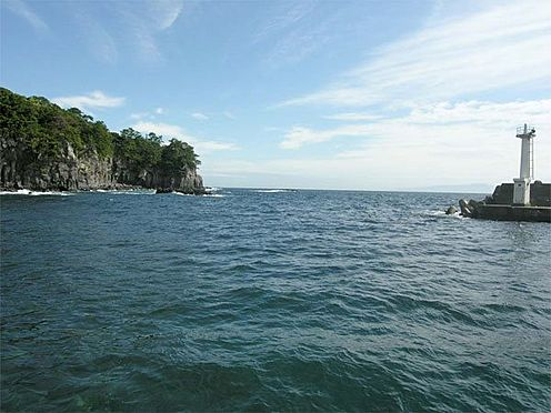 中古マンション-伊東市八幡野 【八幡野港】釣り・ダイビングを楽しめます。