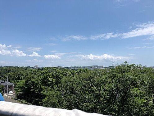 中古マンション-横浜市戸塚区深谷町 バルコニーからの眺望 春には桜を望めます