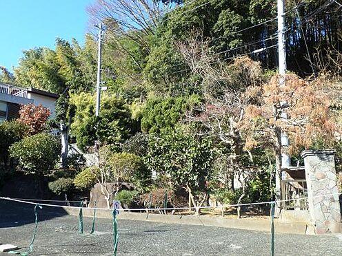 土地-足柄下郡湯河原町宮上 敷地内には立派な庭がございます。四季折々の様子が楽しみです。