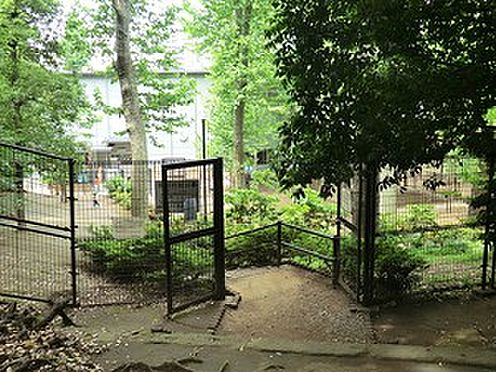 マンション(建物一部)-港区南青山5丁目 周辺環境:氷川の杜公園