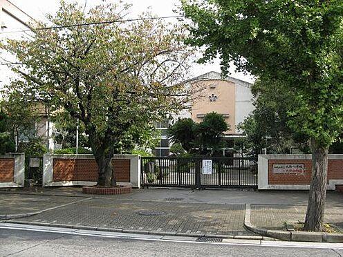 店舗(建物全部)-和歌山市新雑賀町 【小学校】大新小学校まで434m