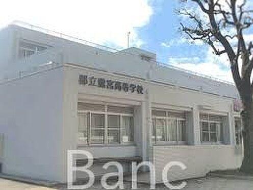 新築一戸建て-中野区鷺宮4丁目 東京都立鷺宮高校 徒歩10分。 760m