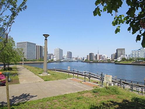中古マンション-中央区佃2丁目 石川島公園(339m)