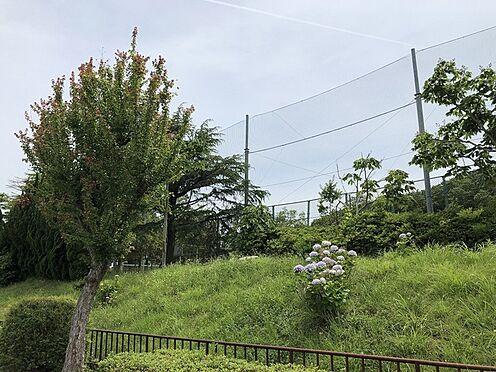 新築一戸建て-神戸市北区星和台5丁目 その他