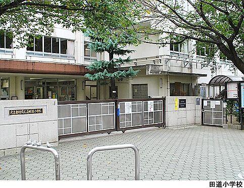 建物全部その他-目黒区三田2丁目 田道小学校