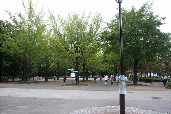 中古一戸建て-練馬区田柄3丁目 光が丘公園(1054m)