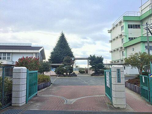 新築一戸建て-仙台市若林区若林7丁目 若林小学校 約400m