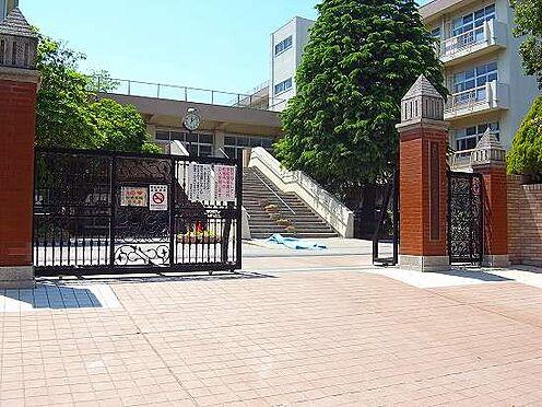 マンション(建物全部)-さいたま市南区根岸3丁目 南浦和中学校 徒歩10分(770m)