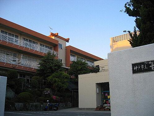 中古一戸建て-神戸市垂水区青山台4丁目 神戸市立垂水東中学校