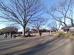 上野桜木1丁目