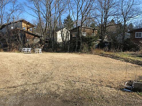 店舗付住宅(建物全部)-北佐久郡軽井沢町大字長倉 お庭はゆったりとした芝庭です。