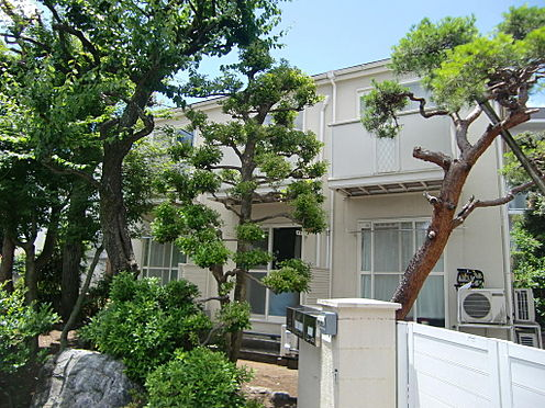 アパート-世田谷区松原5丁目 樹木類は隣地所有物