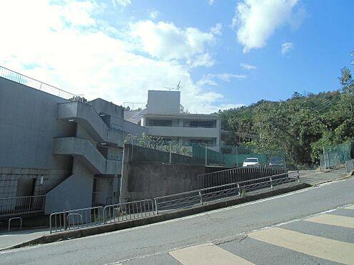 マンション(建物全部)-京都市北区衣笠氷室町 前面道路含む現地外観