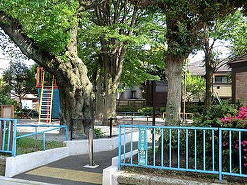 マンション(建物全部)-目黒区柿の木坂2丁目 周辺環境:柿の木坂児童遊園
