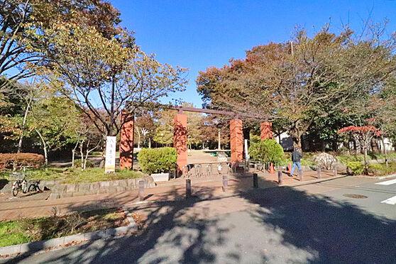 マンション(建物一部)-杉並区上井草1丁目 井草森公園