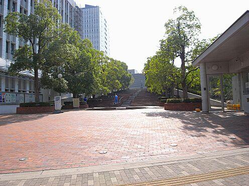 ビル(建物全部)-文京区白山1丁目 【大学】東洋大学通信教育部まで498m