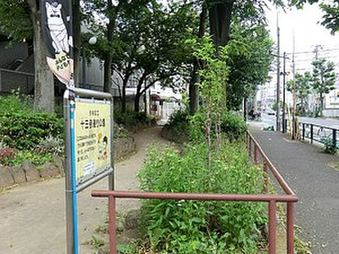 マンション(建物全部)-世田谷区大原1丁目 十三号通り公園