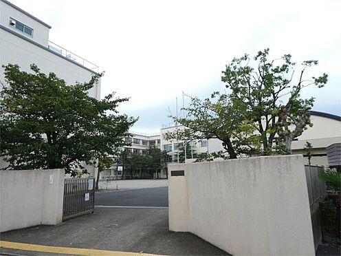 戸建賃貸-足立区大谷田1丁目 足立区立第十二中学校(290m)
