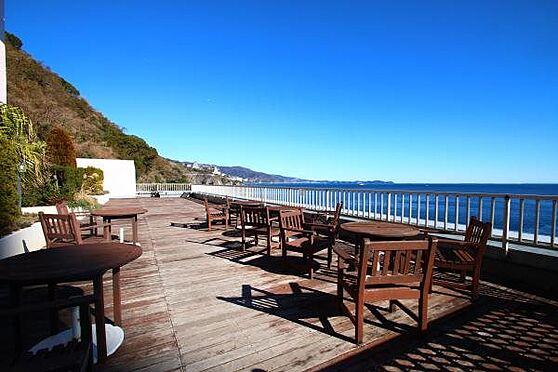 リゾートマンション-熱海市上多賀 シーサイドデッキ:海風を感じるドッグラン&デッキが贅沢に広がります。まさにリゾート。