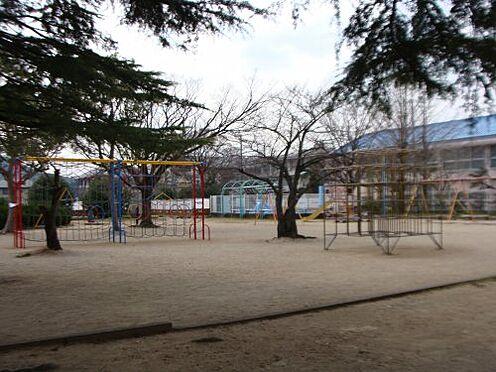 アパート-和歌山市今福3丁目 【公園】高津公園まで1062m