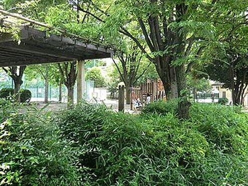 マンション(建物全部)-中野区南台4丁目 南台公園