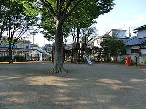 アパート-中野区鷺宮5丁目 周辺環境:上鷺公園